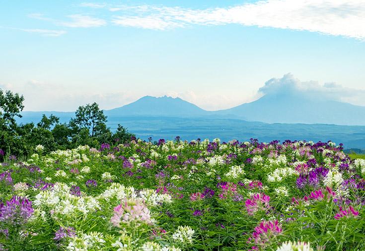 産山村から阿蘇山を望む写真