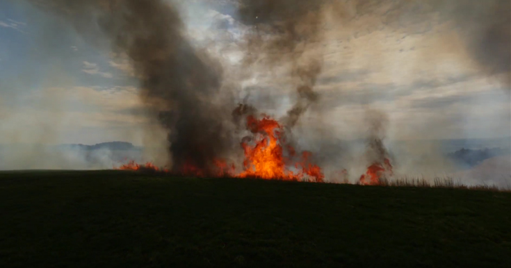 Field Burning